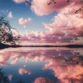 reflection.artist.unknown