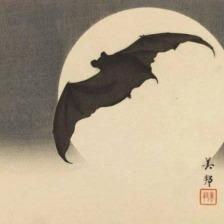 biho.takashi.bat.in.moon