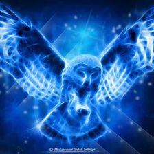 Owl.Muhammad.Sidik.Subagja